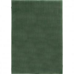 Tapis vert rectangulaire 110x150 ultra doux - ROBIN