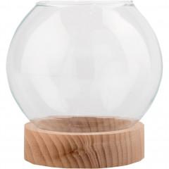 Terrarium en verre et socle en bois - transparent D14cm - MANHATTAN 645