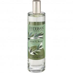 Spray senteur feuilles d'olivier 100ml Esteban® - SOUS L'OLIVIER 095