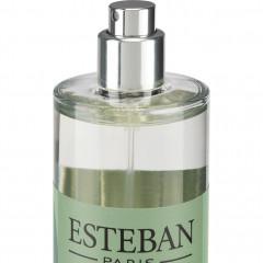 Spray senteur feuilles d'olivier 100ml Esteban® - Haut de la bouteille en verre - SOUS L'OLIVIER 095