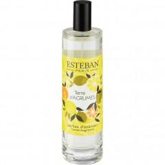 Spray senteur agrumes 100ml Esteban® - TERRE D'AGRUMES 101