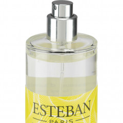 Spray senteur agrumes 100ml Esteban® - Haut de la bouteille - TERRE D'AGRUMES 101