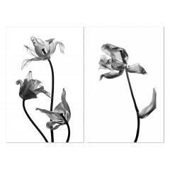 Tableau fleurs plexiglas / Photo NOIR et BLANC - diptyque